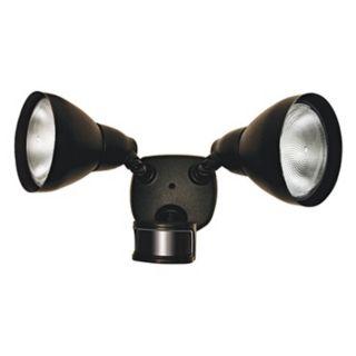"""Black ENERGY STAR 17"""" 2 Light Motion Sensor Security Light   #K6512"""