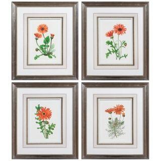 Set of 4 Uttermost Orange Flowers I IV Framed Wall Art   #V3978