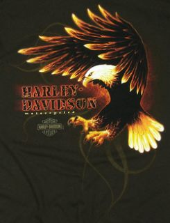 New Maui Harley Davidson Mens 2XL Phoenix Dark Chocolate Brown T