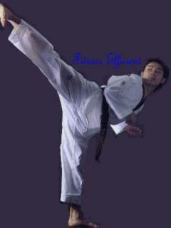 Martial Art Karate Kicking Shield Striking Pad