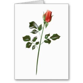 Long stem Red Rose Greeting Cards