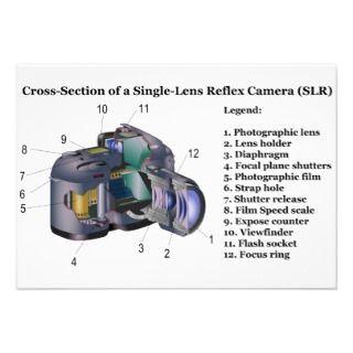 Diagram of a Single Lens Reflex Camera SLR Custom Announcement