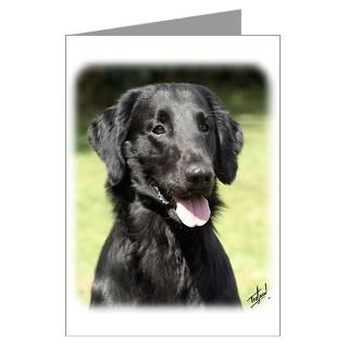 Flat Coated Retriever 9Y040D 120 Greeting Cards (P