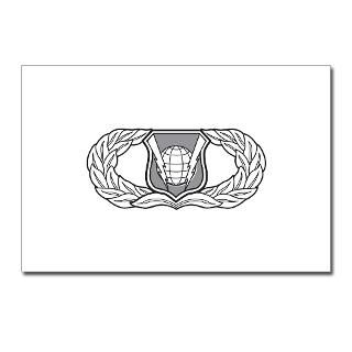 Air Force Command and Control Badge  The Air Force Store