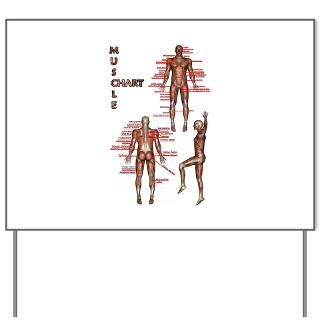 Muscle Chart Yard Sign