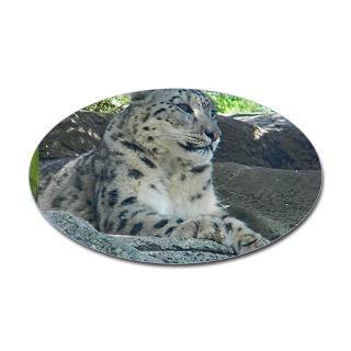 Snow Leopard Stickers  Car Bumper Stickers, Decals
