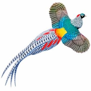 Lady Amherst Pheasant Ornament Photo Cutout
