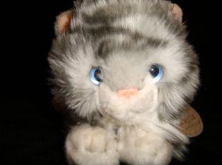 Keel Toys Kitten Cat 9 Kayla Plush Gray White Blue Eyes Red Collar