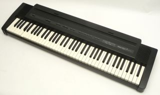 DIGITAL ELECTRIC ELECTRONIC PIANO KEYBOARD MUSIC MUSICAL INSTRUMENT