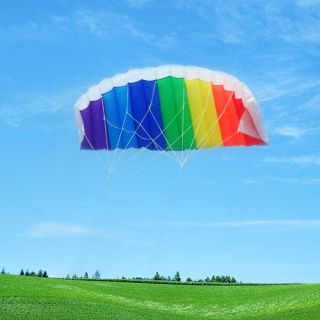 CONTROL Parafoil Power Stunt Sport Parachute Kite Beginner/Esay to Fly