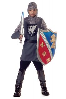 New Renaissance Medieval Valiant Knight Child Halloween Costume