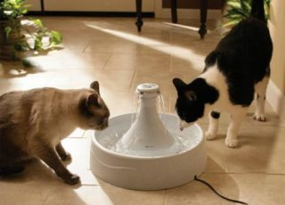 Drinkwell 360 Pet Cat Dog Fountain D360 Re