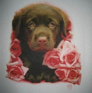Chocolate Lab Puppy Shirt Pink Roses 2T 3T 4T 5 6 6 8