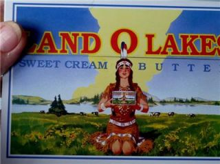 Tin Land O Lakes Sweet Cream Butter Recipe Box with Cards Mint