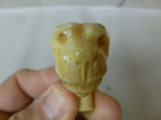 Faux ivory? or Bone Cane Top   Carved Lion or Tiger Head 2 1/2 Inches