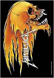 New Metallica Cloth Poster Flag Skull Flames