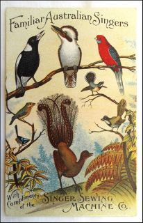 RARE Singer Sewing Machine Post Card Advert Kookaburra