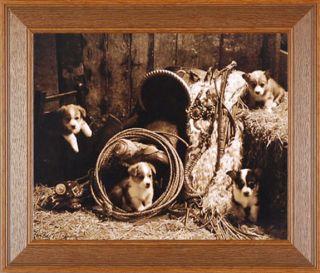 Korgie Boys Robert Dawson Western Dogs Puppies Framed Picture Poster