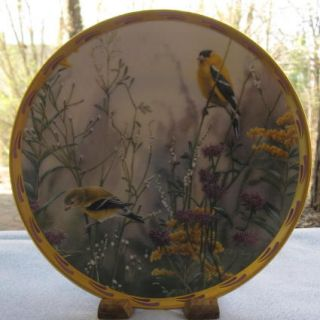 Golden Splendor Goldfinch Catherine McClurg Collector Plate