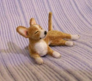 Original Alpaca Flocked Chihuahua Dog EBSQ CammiS