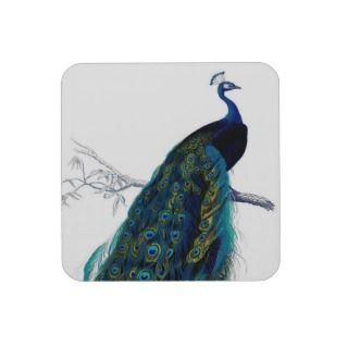 Vintage Blue Elegant Colorful Peacock Coaster