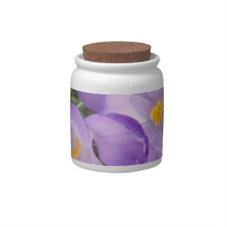 Purple Crocus Cookie Jar Candy Jars