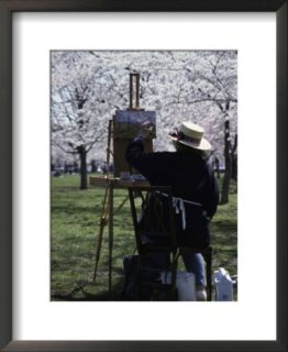 An Artist Paints a Landscape of Blossoming Japanese Cherry Trees Pre made Frame