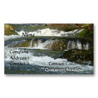 Fly Fishing Fishermen Guide Company Business Card.