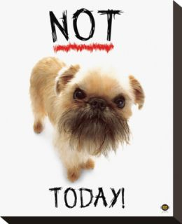 Not Today! Stretched Canvas Print by Yoneo Morita