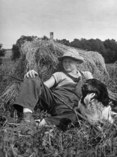 Freckled Face Boy and His Dog Relaxing in a Haystack Premium Photographic Print by Myron Davis