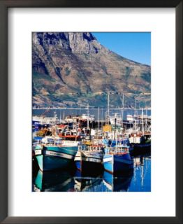 Fishing Boats in Hout Bay Marina, Cape Town, South Africa Pre made Frame