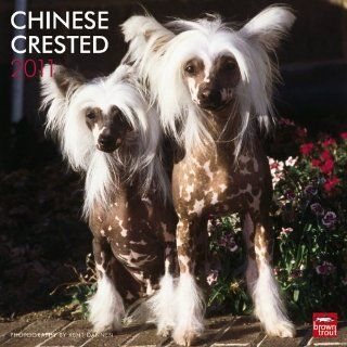 Chinese Crested 2011 Calendar Browntrout Publishers