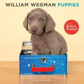 William Wegman Puppies Calendar (Wall Calendar) William