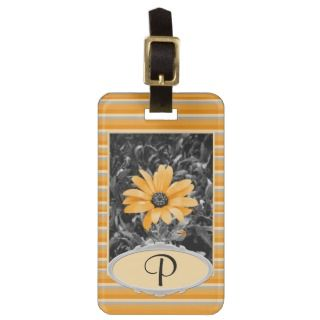 Desaturated Spring Flash African Daisy Photograph Bag Tag