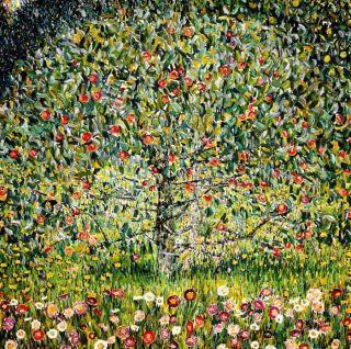 Gustav Klimt Der Apfelbaum g81381 80x80cm bemerkenswertes Olgemaelde