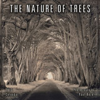 Nature of Trees, The   2013 12 Month Calendar Calendars