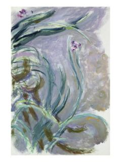 Iris, 1924 25 (Oil on Canvas) Giclee Print by Claude Monet