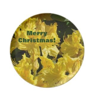 Merry Christmas plate gifts for Goodies Rhodies