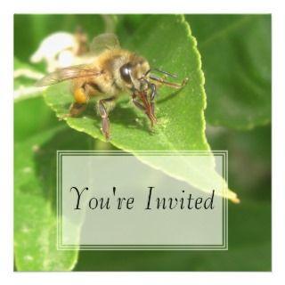 Hello Honeybee Inviaions
