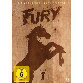 Flipper   Staffel 1, Box 1 [2 DVDs] Luke Halpin, Tommy