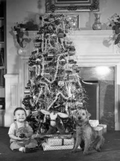 Christmas Tree With Boy and Dog Photographic Print by George Marks