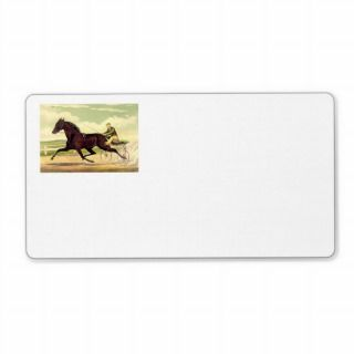 TOP Sulky Champ Personalized Shipping Label