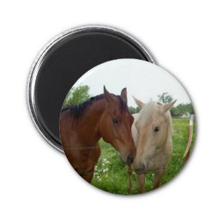 BFF Best Friends Forever   Horses Magnets