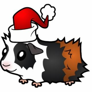 Christmas Guinea Pig (tortoiseshell) Photo Cut Out
