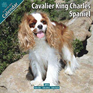Kalender 2010 Cavalier King Charles Spaniel Bücher
