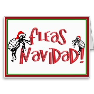 Fleas Navidad   Dancing Christmas Fleas Cards
