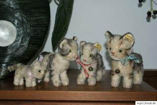 Steiff Tabby Katzen 1317,0 und 2700/14 mit Knopf,Fahne sowie 1310 u