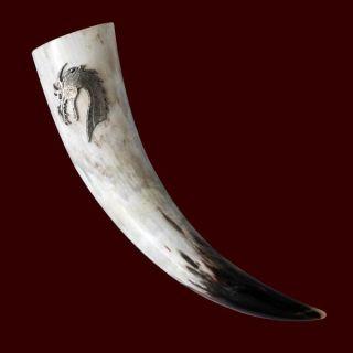 Natur Trinkhorn 0,3 oder 0,5 Liter Zinn verziert Handarbeit, für Met