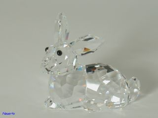 Swarovski Hase liegend Rabbit lying 905778