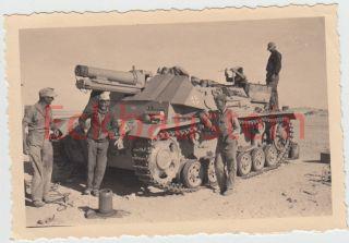 Orig Foto Afrika DAK Sturmpanzer II Kennung Palme Panzer Tank